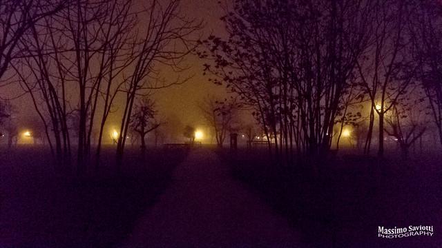 Foggy night 5