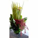 南2西3のビル地下1階にオープンのスープカレー屋さんに。 ストレチア「ゴールドクレスト」、オクラレルカの葉、オンシジューム「パープルエルフィン」、バラ「ブリランテ」、モンステラの葉。 #mellflowers #花屋 #花 #flower #flowershop #札幌 #sapporo #札幌花屋 #flowerarrangement