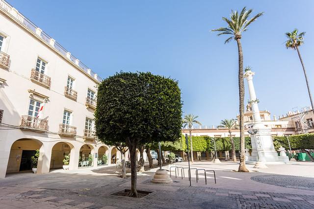 plaza vieja (4)