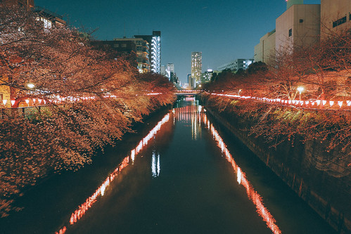 Nakameguro 中目黑 東京 Tokyo   by 里卡豆