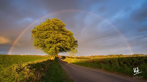 2017 april birsett dumfriesandgalloway scotland sonya7ii2 sonyfe41635zaoss rainbow spring sunset tree