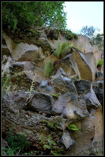 Anciennes coulées basaltiques  34362297795_2216cb39d4