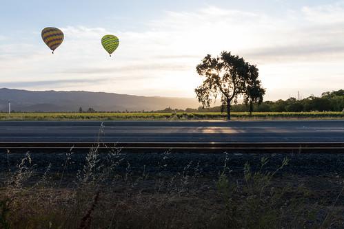 napa vinetrail hotairballoon sunrise
