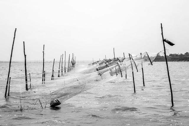 Pêche sur le lac Togo