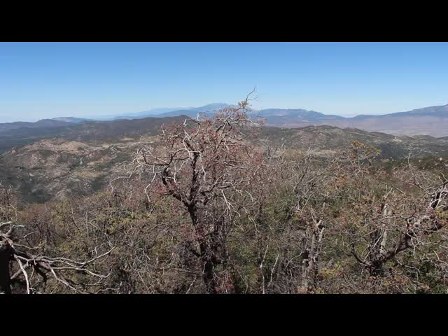 232 Panorama video from the Hot Springs Mountain Summit