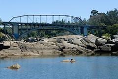 Rainbow Bridge (Greenback Lane)