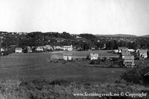 Hønefoss (2317)