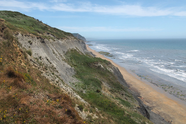 The coast east of Charmouth