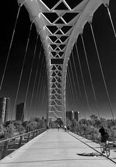 Humber Rive Bay Arch Bridge