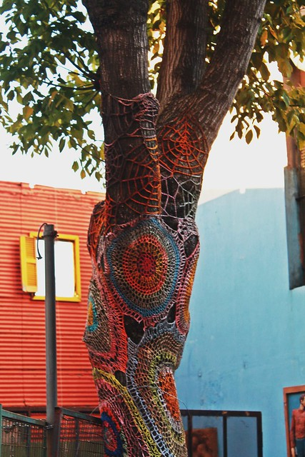 the dressed tree