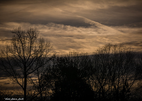 nature clouds trees sundown sunset