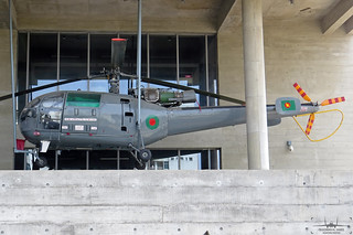 Z1829: IAF HAL Chetak in BAF colors.