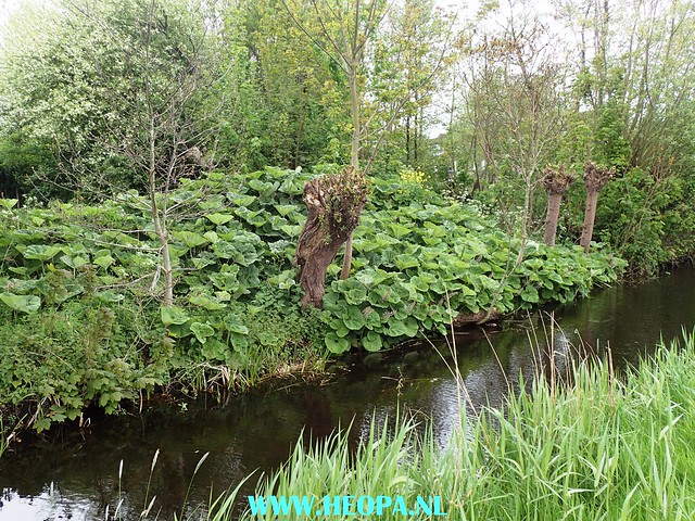 2017-05-03  Uithoorn 25 km (17)