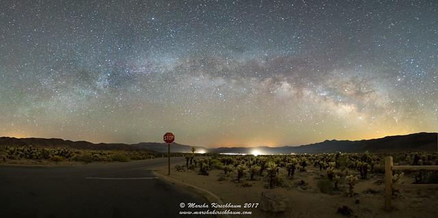 Stop!  Milky Way - Joshua Tree National Park Panorama