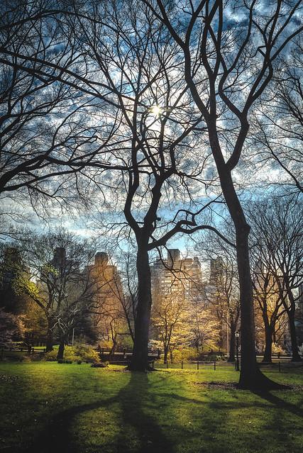 New York Central Park-literary walk