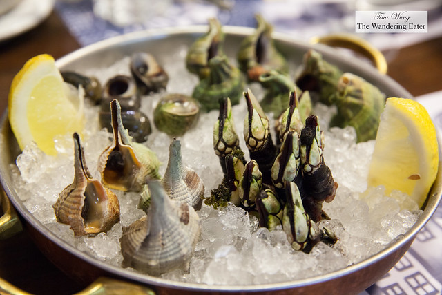 Steamed then chilled shellfish - Percebes, whelks, sea snails