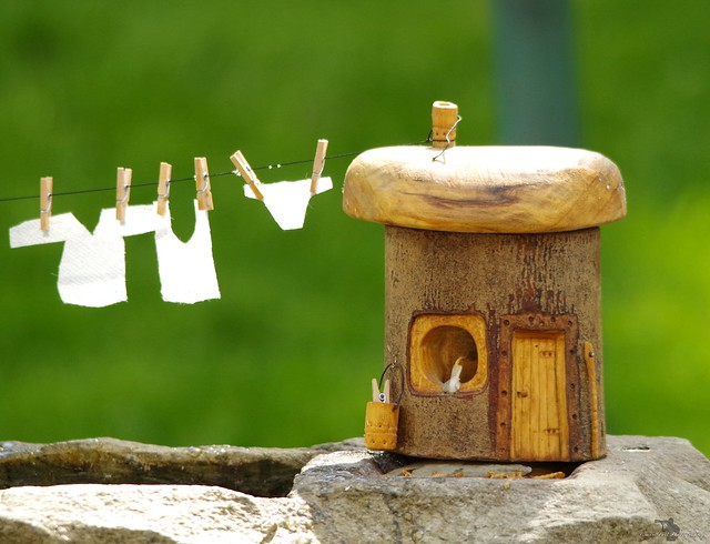 fairy-borrower house wash day (2)