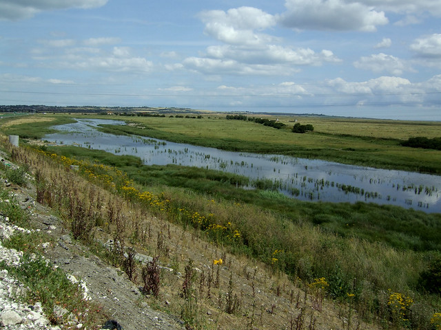 Marshes at Swale, Kent