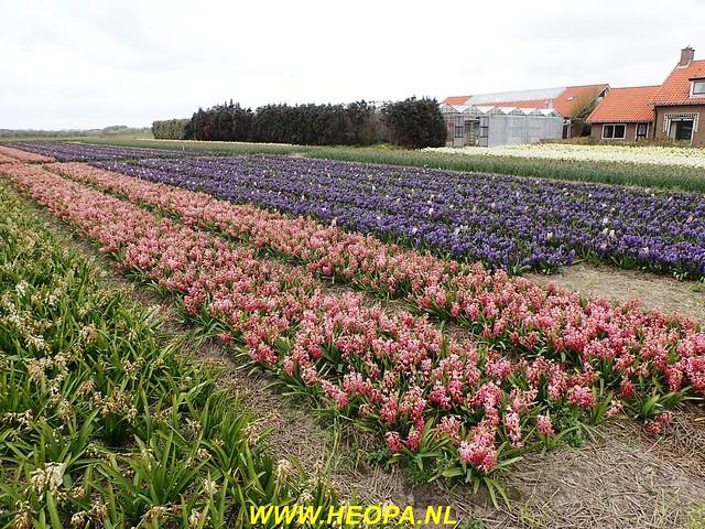 2017-04-22          De Zeemansloop       41 Km  (51)