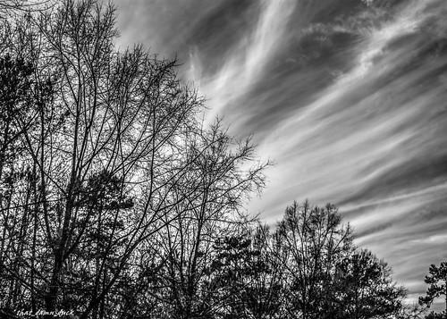 blackandwhite nature clouds landscape bw blackwhite nikon