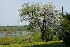 Sungai Biebrza