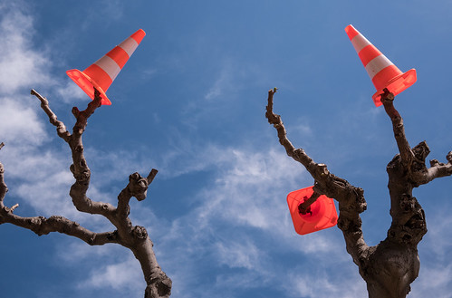 Marseillan, cones