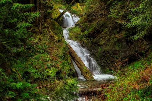changecreek changecreekfalls waterfall forest