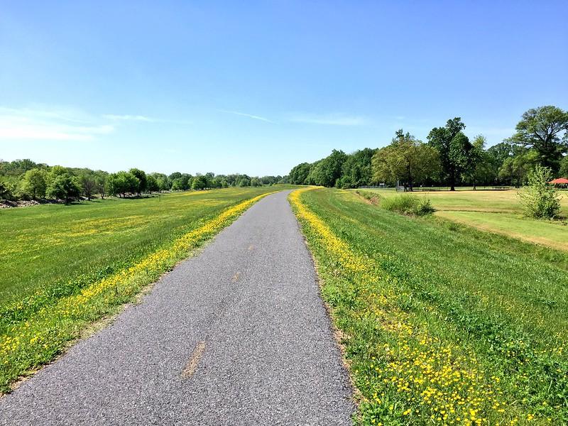 Northeast Branch Trail