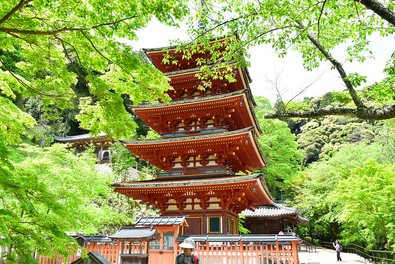 長谷寺五重の塔