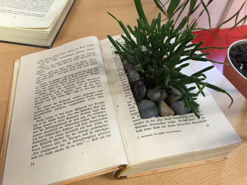 Buch als Blumentopf