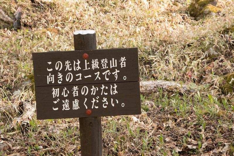 20150510-皇海山-0147.jpg
