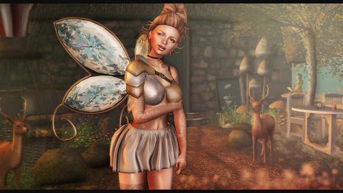 The Fantasy Fairy