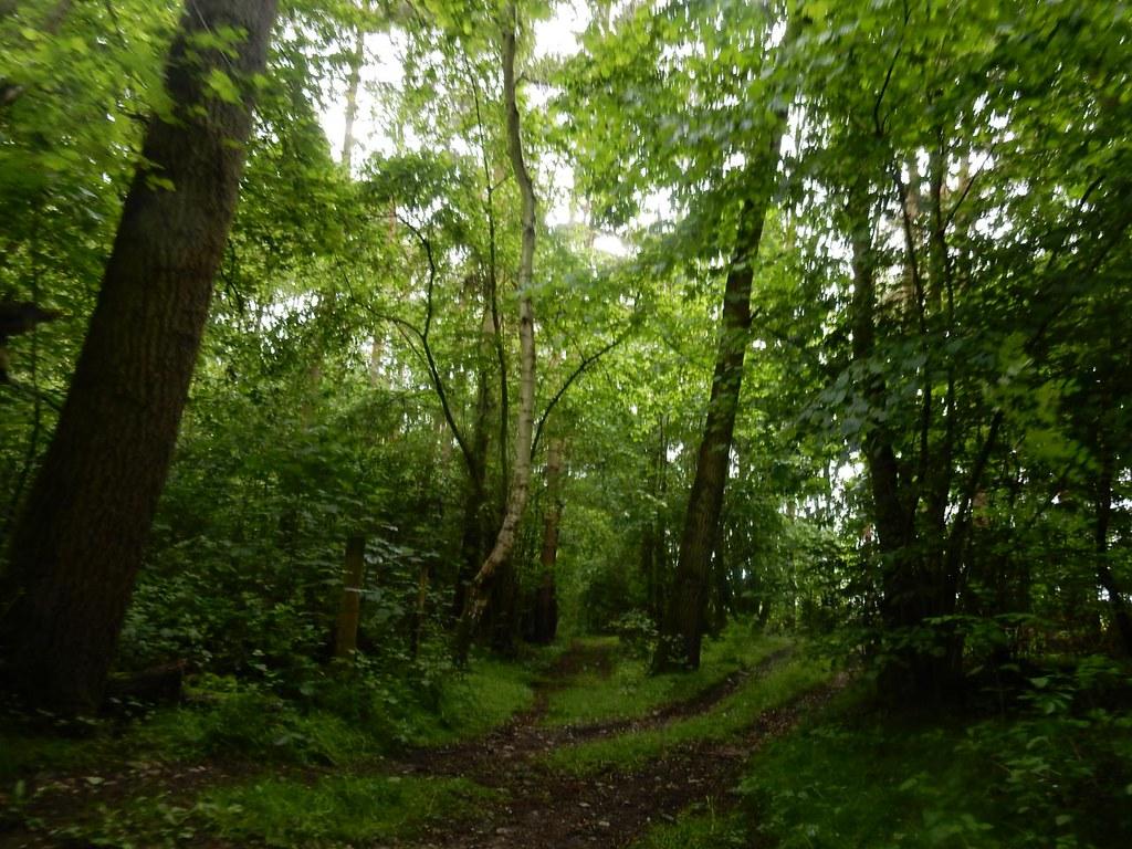 Paddock Wood Thame Circular
