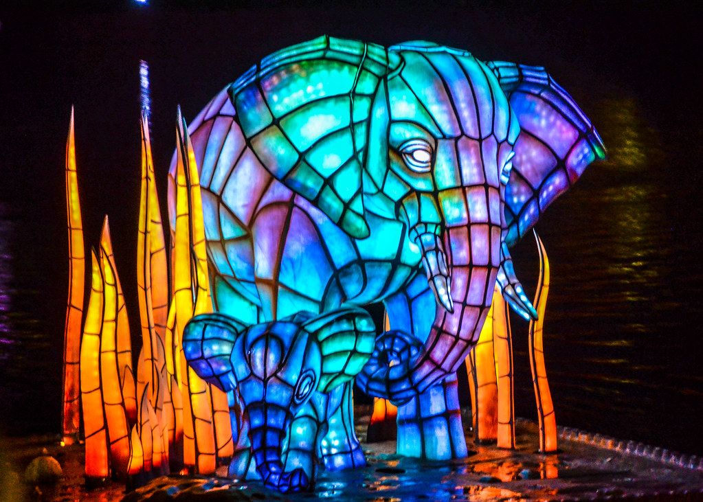 Elephant RoL