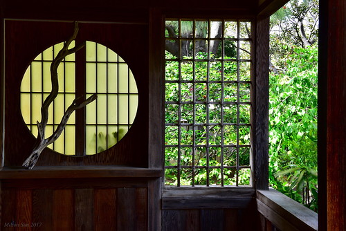 sanmateojapanesegarden house window california architecture building sanmateocounty trees spring garden green