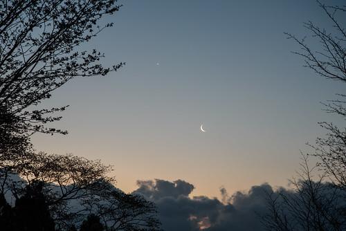 宇陀郡 奈良県 japan 屏風岩 日の出 sunrise 桜 cherry