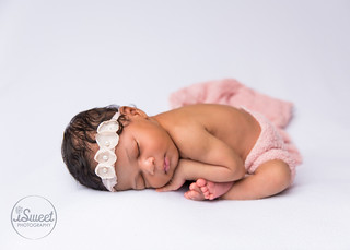 vibrant newborn session | Boston baby photographer