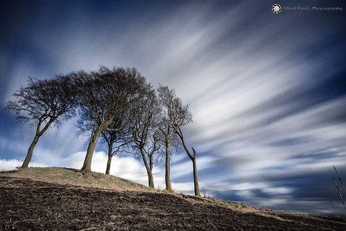 bernacer sep silent eagle photography silenteaglephotography canon canoneos5dmarkiii copthill sevensisters trees plants longexposure lee leefilters bigstopper sky clouds weather blue white outdoor sevensistersroundbarrow northeast england