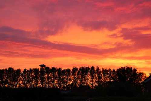 europe england cheshire nature outdoor beauty sunset silhouette