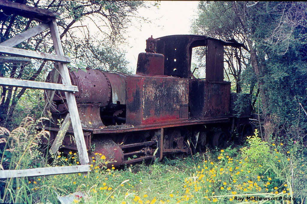 An old Barclay    0-4-2 at Ruru in 1969