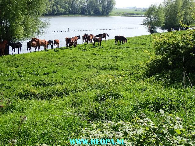 2017-05-06       Wageningen        40 km  (181)