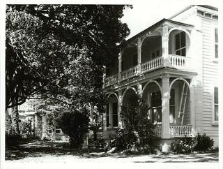 Historic Houses in Princes Street, Auckland