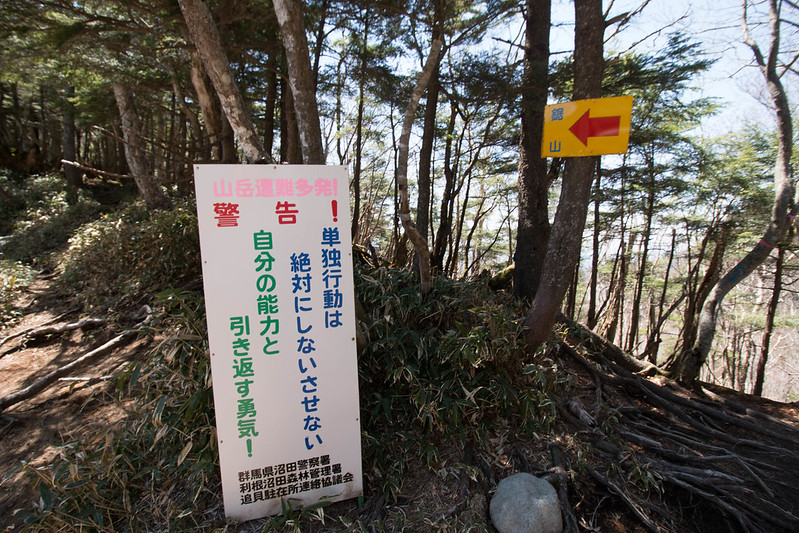 20150510-皇海山-0562.jpg