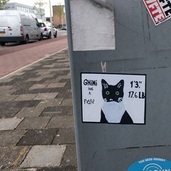 Ghini has a posse #stickerart #streetart