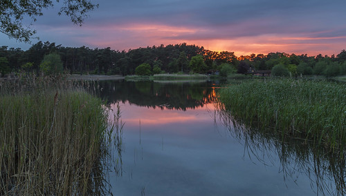 sunsets frenshamlittlepond surrey reflections reeds farnham national trust greatphotographers