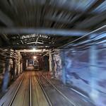 underground race ⚒️