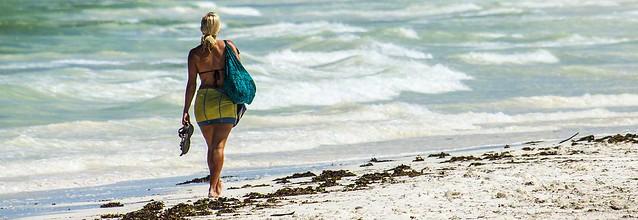 on the beach pano1 (Explored)