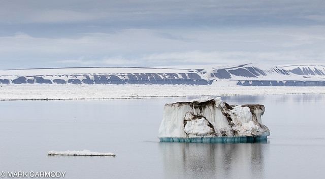Svalbard and its disappearing ice