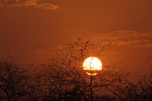 sunrise debmalyamukherjee canon550d tamron70300 sun