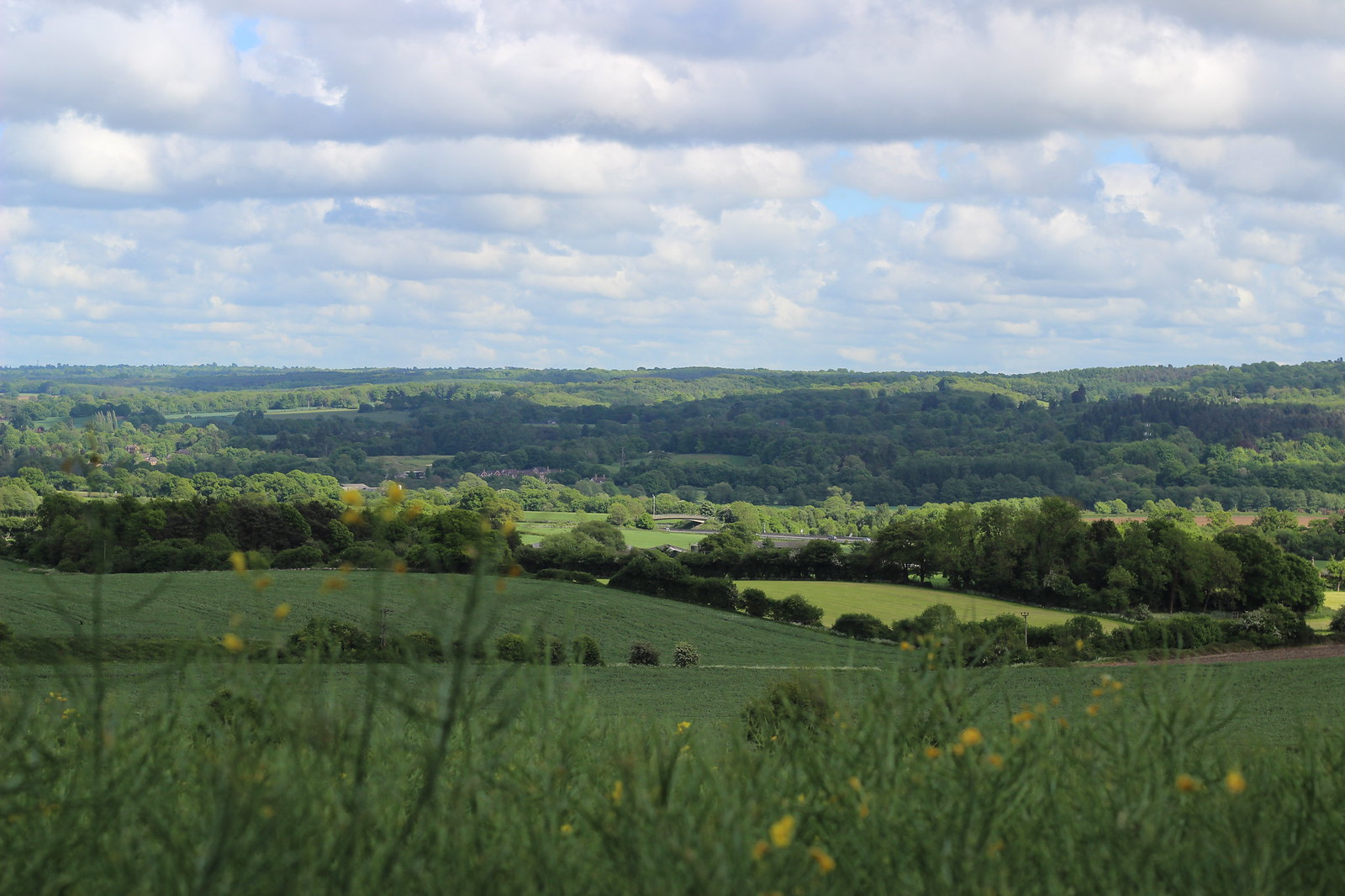 Caterham to Knockholt walk